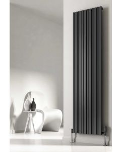 Reina Raile Steel Anthracite Vertical Designer Radiator
